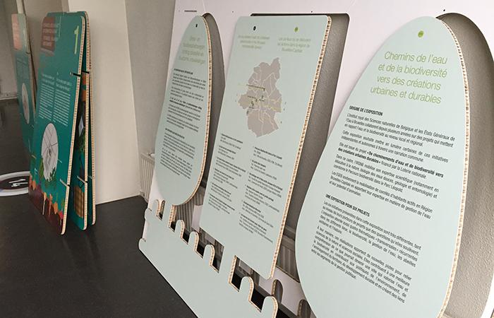 Musée des Sciences naturelles | Exposition